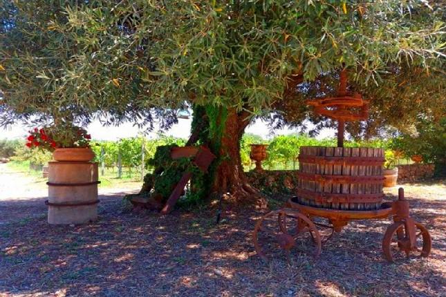 Peloponnese wineries