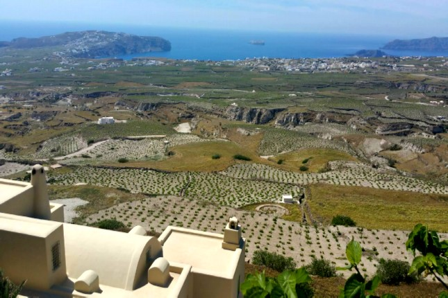 Santorini_wineries
