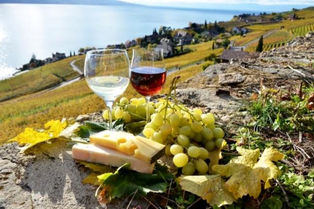 Santorini_wine_paths