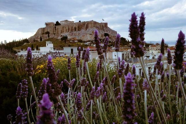 Acropoli_tours