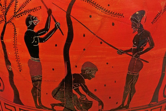 The olive tree and the ancient Olympic Games