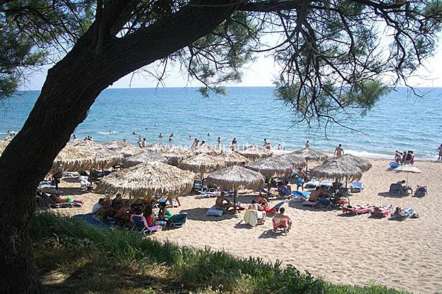 Chlemoutsi Castle & beach 3