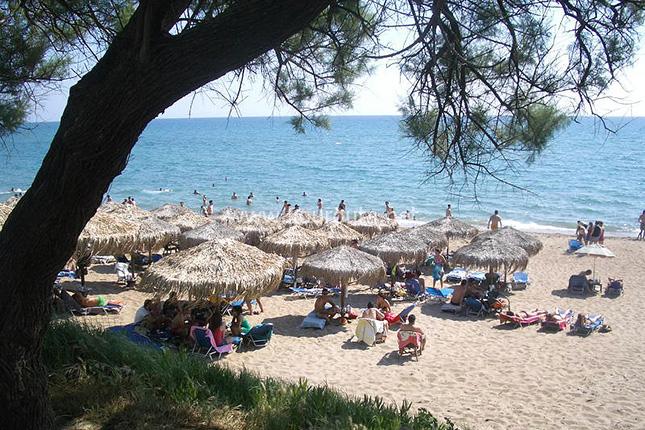 The Highlights of Olympia – site, monastery and Agios Andreas beach 11