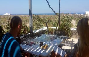 wine_tasting_tour